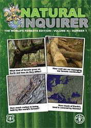 The Natural Inquirer World Forest's Edition